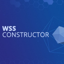 WSS Constructor